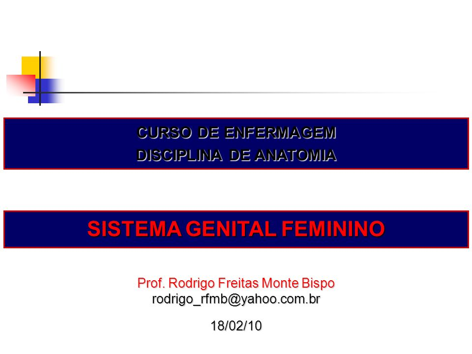 DISCIPLINA DE ANATOMIA SISTEMA GENITAL FEMININO