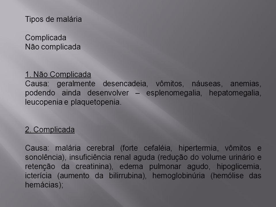 Tipos de malária Complicada. Não complicada. 1. Não Complicada.