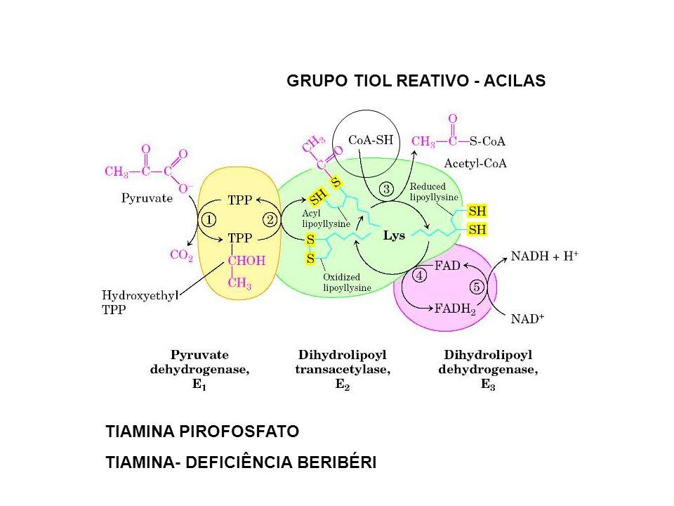 GRUPO TIOL REATIVO - ACILAS