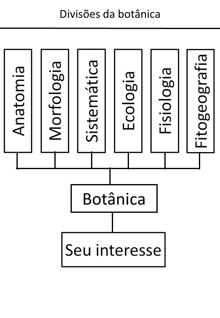 Divisões da botânica Botânica