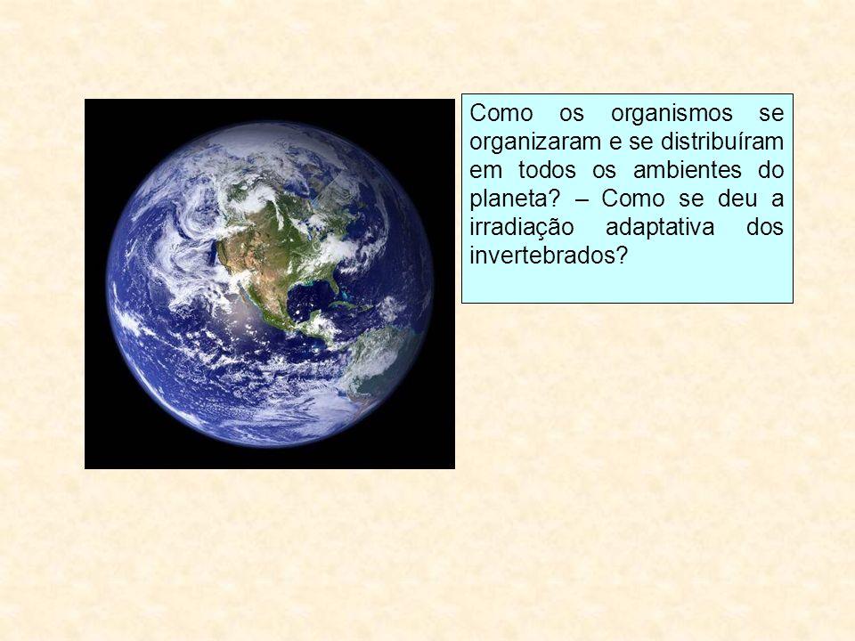 Como os organismos se organizaram e se distribuíram em todos os ambientes do planeta.