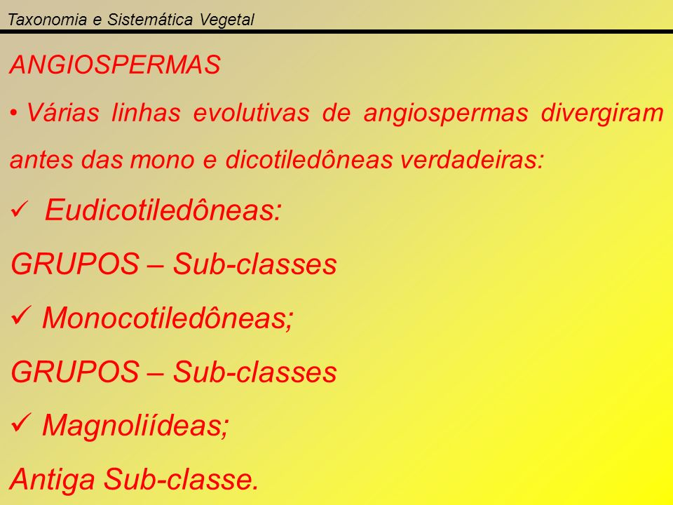 GRUPOS – Sub-classes Monocotiledôneas; Magnoliídeas;