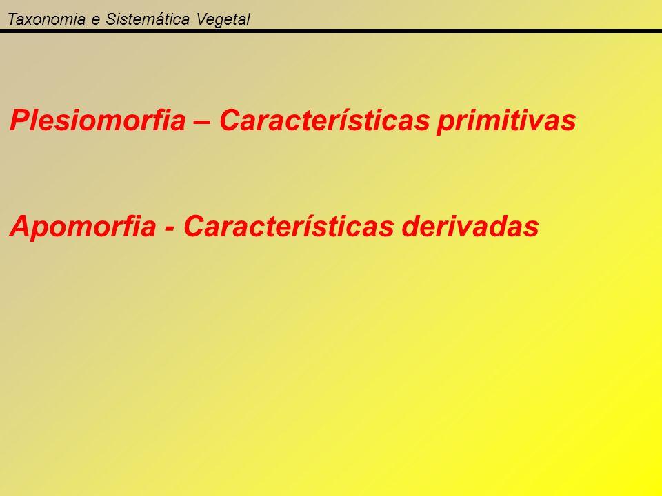 Plesiomorfia – Características primitivas