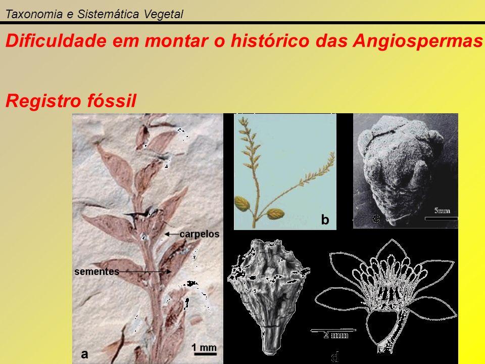 Dificuldade em montar o histórico das Angiospermas