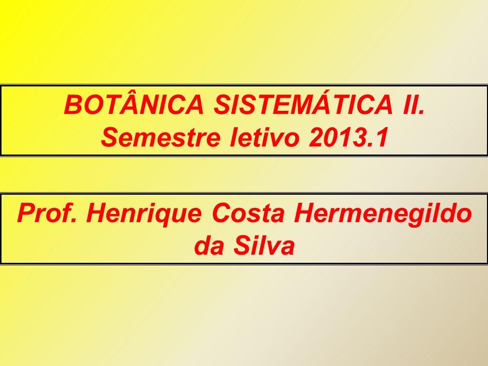 BOTÂNICA SISTEMÁTICA II. Semestre letivo 2013.1