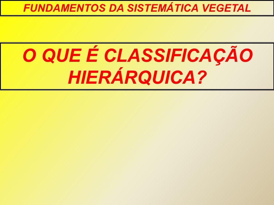 FUNDAMENTOS DA SISTEMÁTICA VEGETAL O QUE É CLASSIFICAÇÃO HIERÁRQUICA