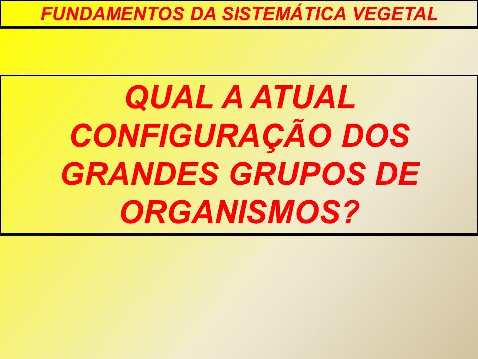QUAL A ATUAL CONFIGURAÇÃO DOS GRANDES GRUPOS DE ORGANISMOS
