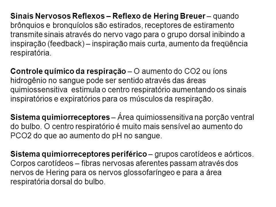 Sinais Nervosos Reflexos – Reflexo de Hering Breuer – quando brônquios e bronquíolos são estirados, receptores de estiramento transmite sinais através do nervo vago para o grupo dorsal inibindo a inspiração (feedback) – inspiração mais curta, aumento da freqüência respiratória.