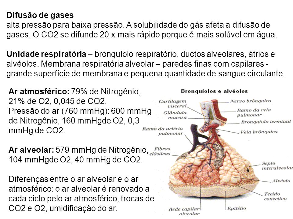 Difusão de gases