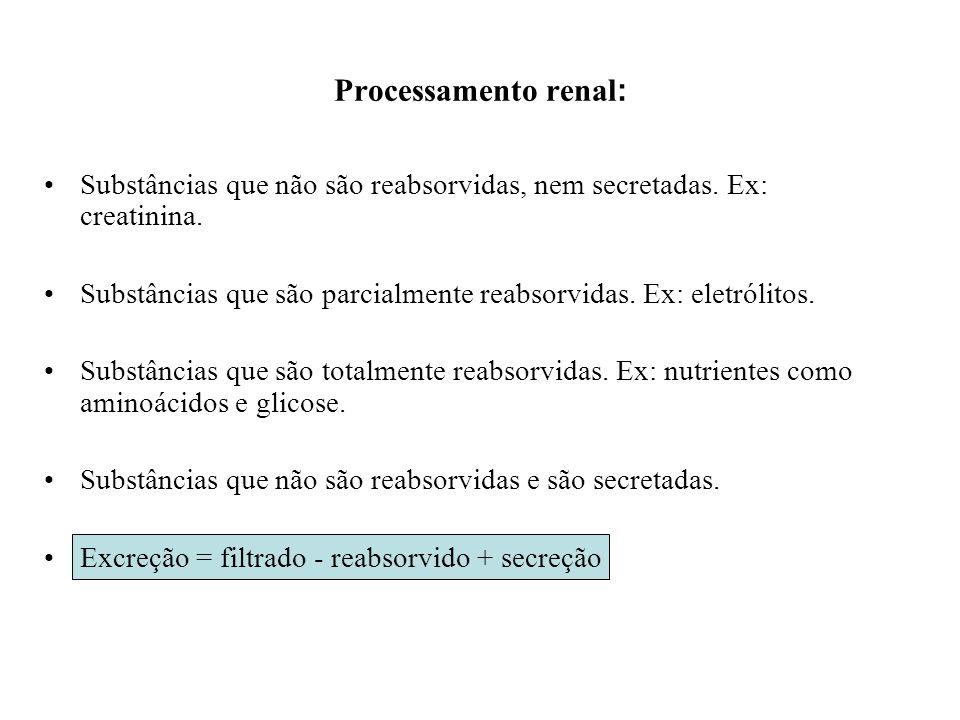 Processamento renal: Substâncias que não são reabsorvidas, nem secretadas. Ex: creatinina.