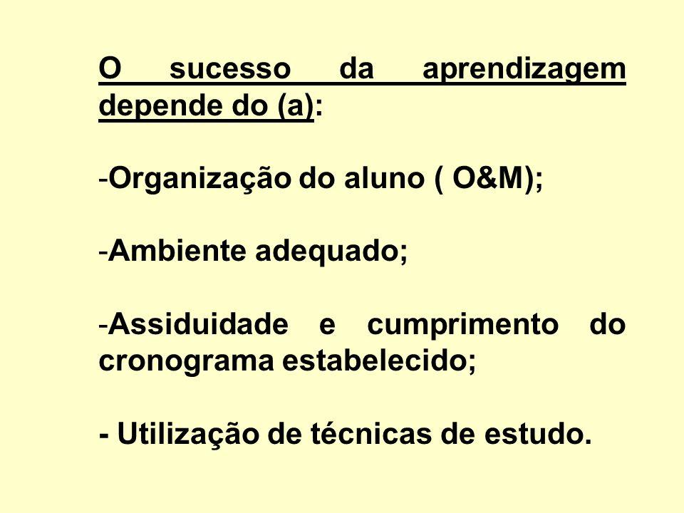 O sucesso da aprendizagem depende do (a):