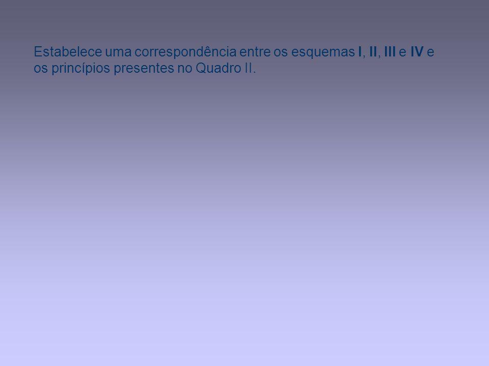 Estabelece uma correspondência entre os esquemas I, II, III e IV e os princípios presentes no Quadro II.