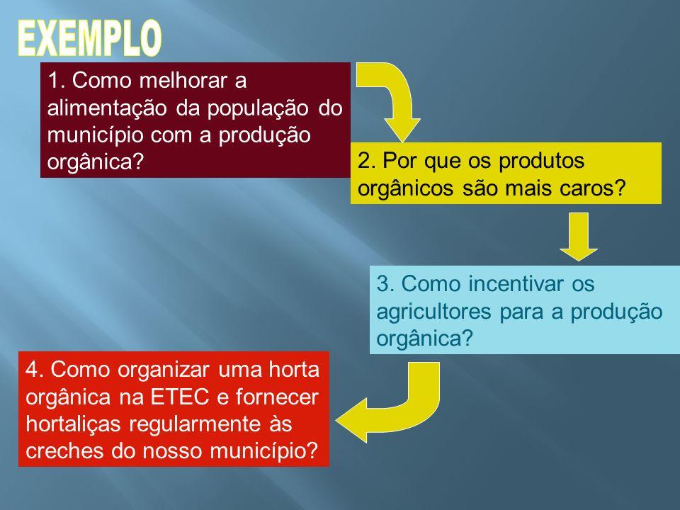 EXEMPLO 1. Como melhorar a alimentação da população do município com a produção orgânica 2. Por que os produtos orgânicos são mais caros