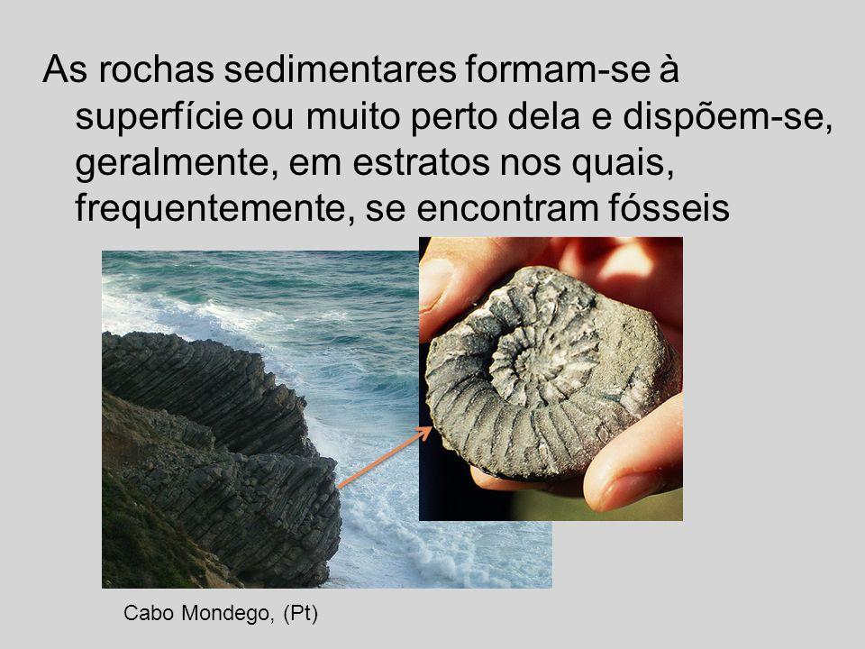 As rochas sedimentares formam-se à superfície ou muito perto dela e dispõem-se, geralmente, em estratos nos quais, frequentemente, se encontram fósseis