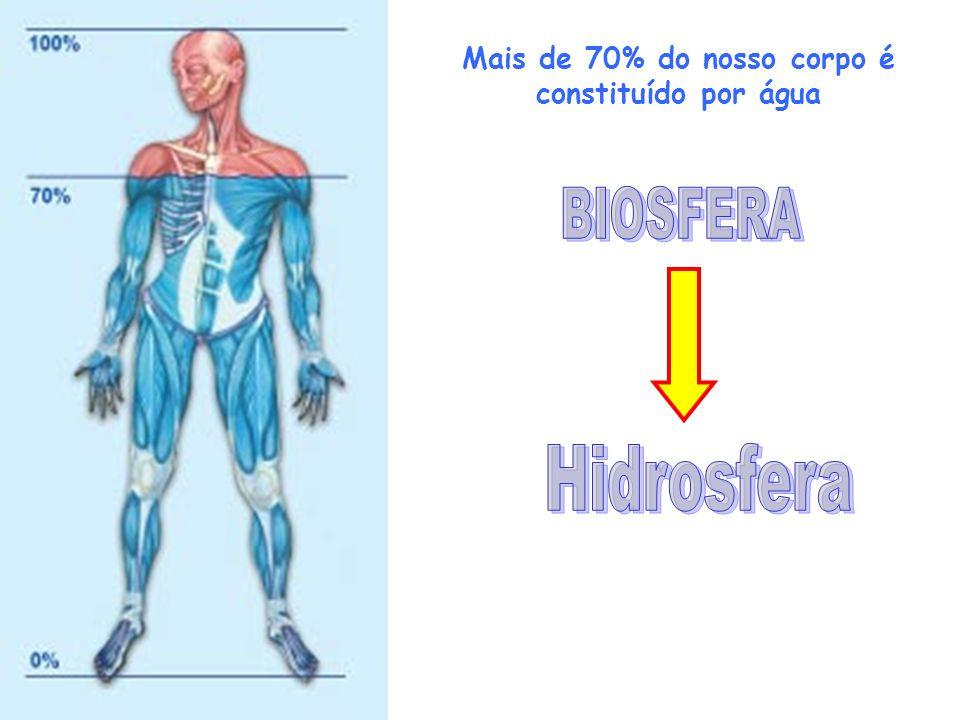 Mais de 70% do nosso corpo é constituído por água