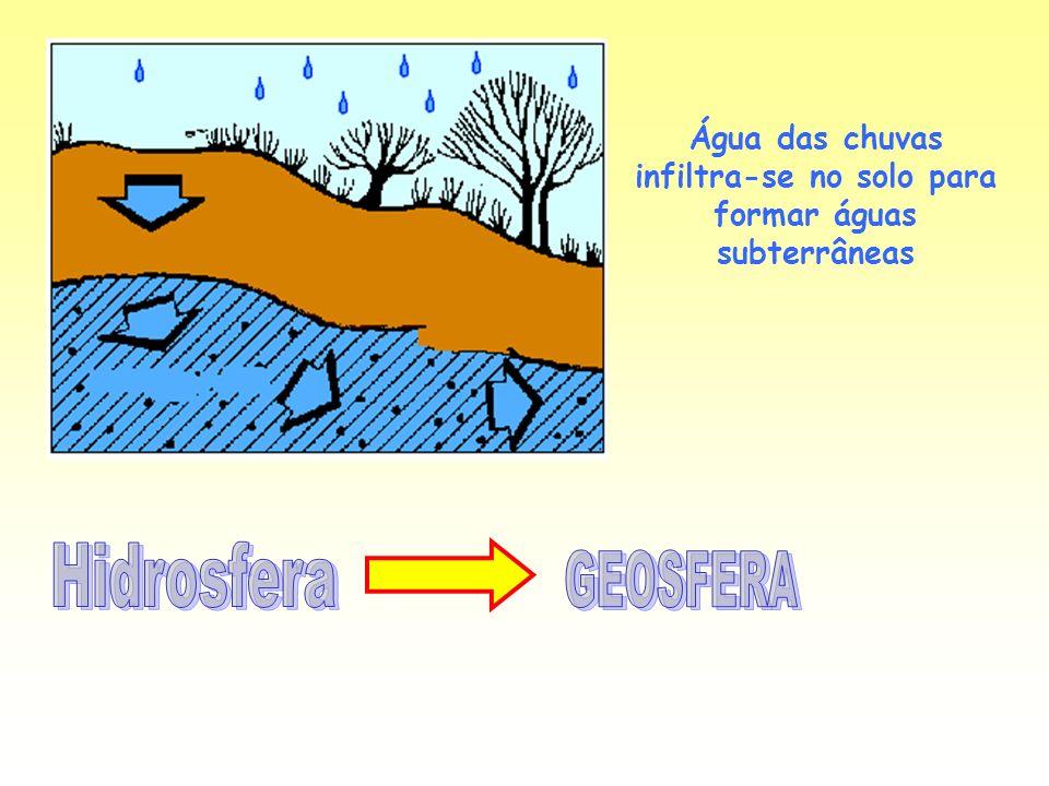 Água das chuvas infiltra-se no solo para formar águas subterrâneas