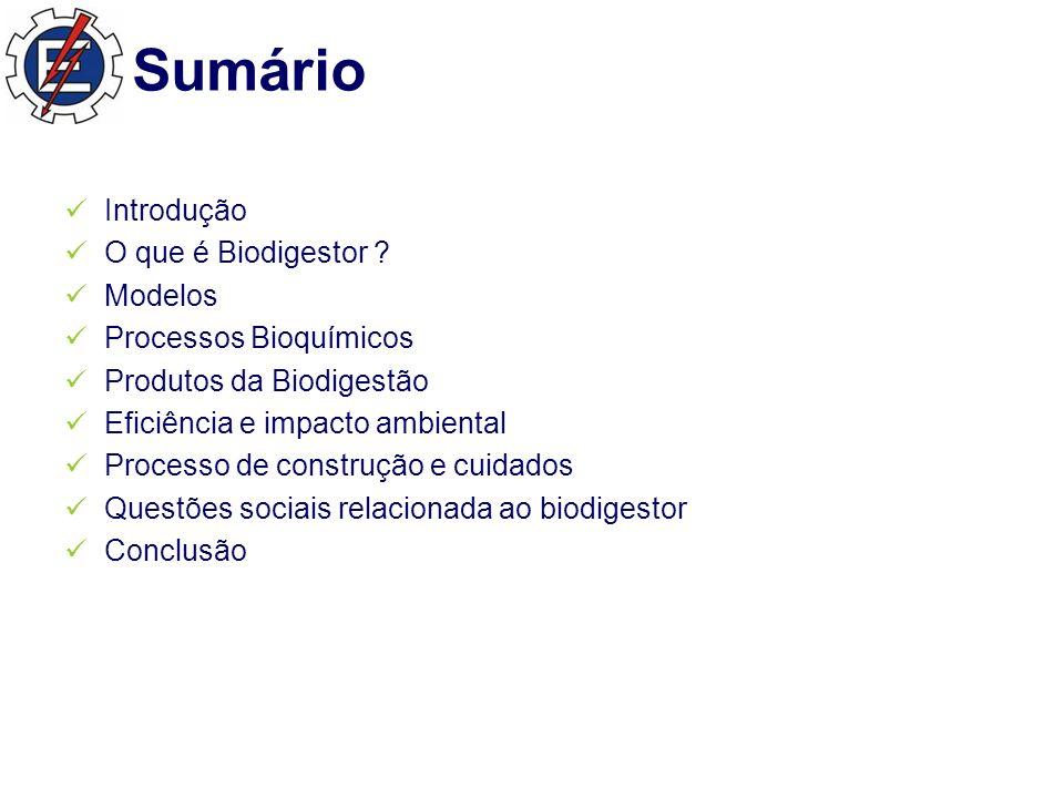 Sumário Introdução O que é Biodigestor Modelos Processos Bioquímicos