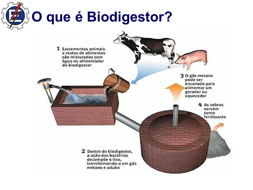 O que é Biodigestor