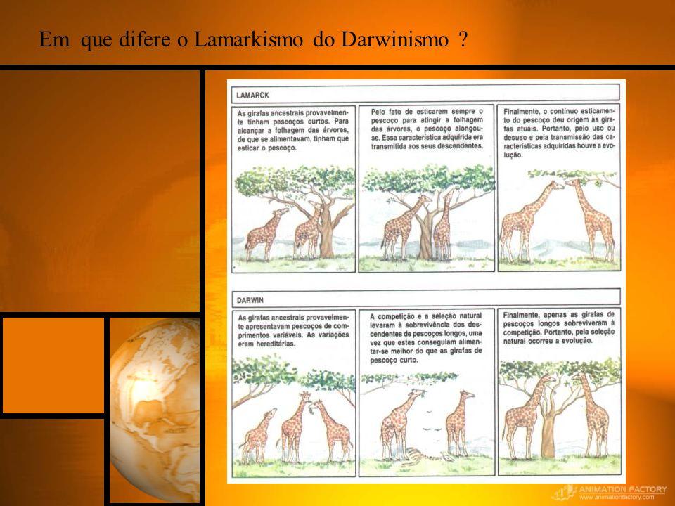 Em que difere o Lamarkismo do Darwinismo