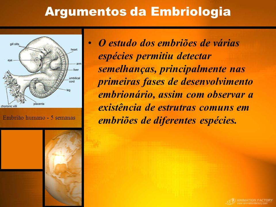 Argumentos da Embriologia