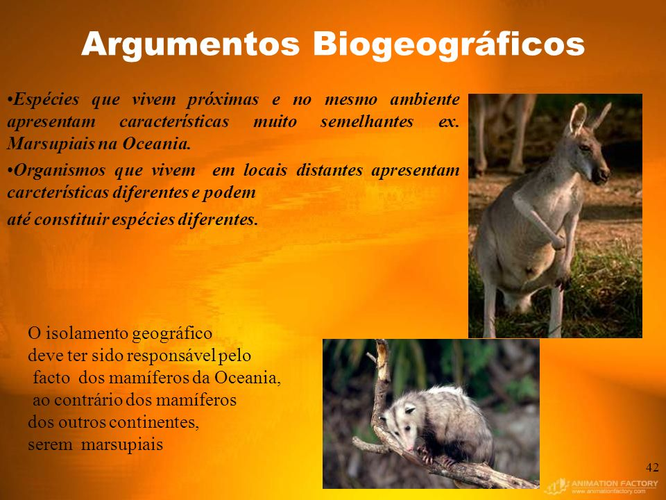 Argumentos Biogeográficos