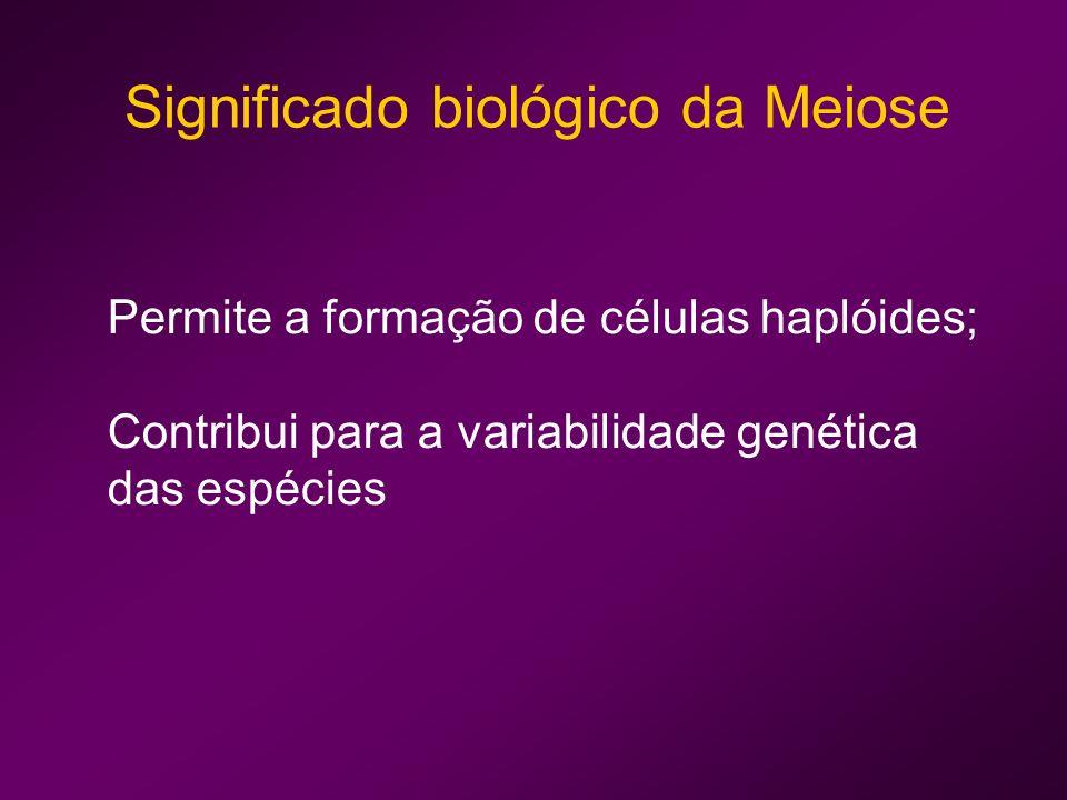 Significado biológico da Meiose