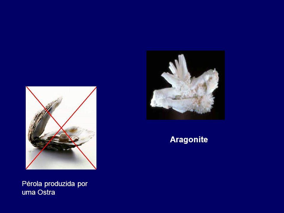 Aragonite Pérola produzida por uma Ostra