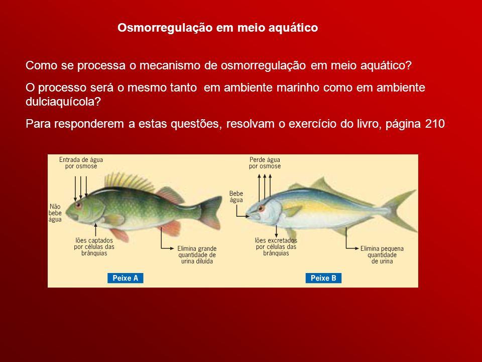 Osmorregulação em meio aquático