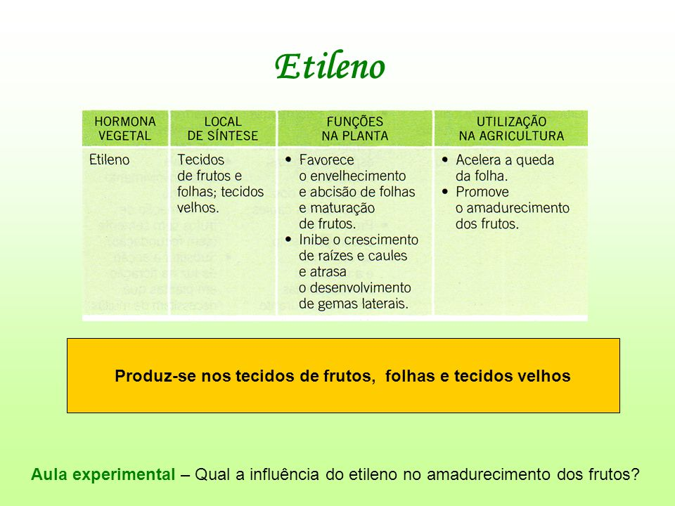 Produz-se nos tecidos de frutos, folhas e tecidos velhos