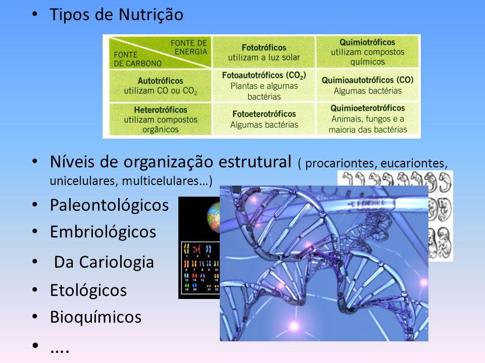 Tipos de Nutrição Níveis de organização estrutural ( procariontes, eucariontes, unicelulares, multicelulares…)