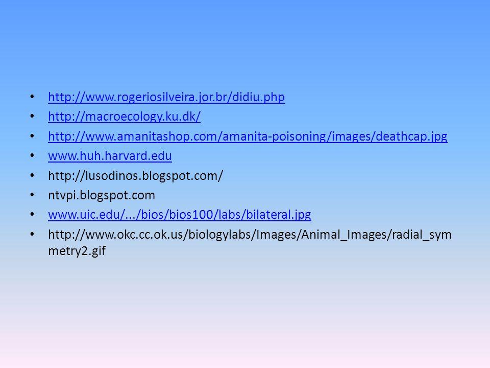 http://www.rogeriosilveira.jor.br/didiu.php http://macroecology.ku.dk/ http://www.amanitashop.com/amanita-poisoning/images/deathcap.jpg.