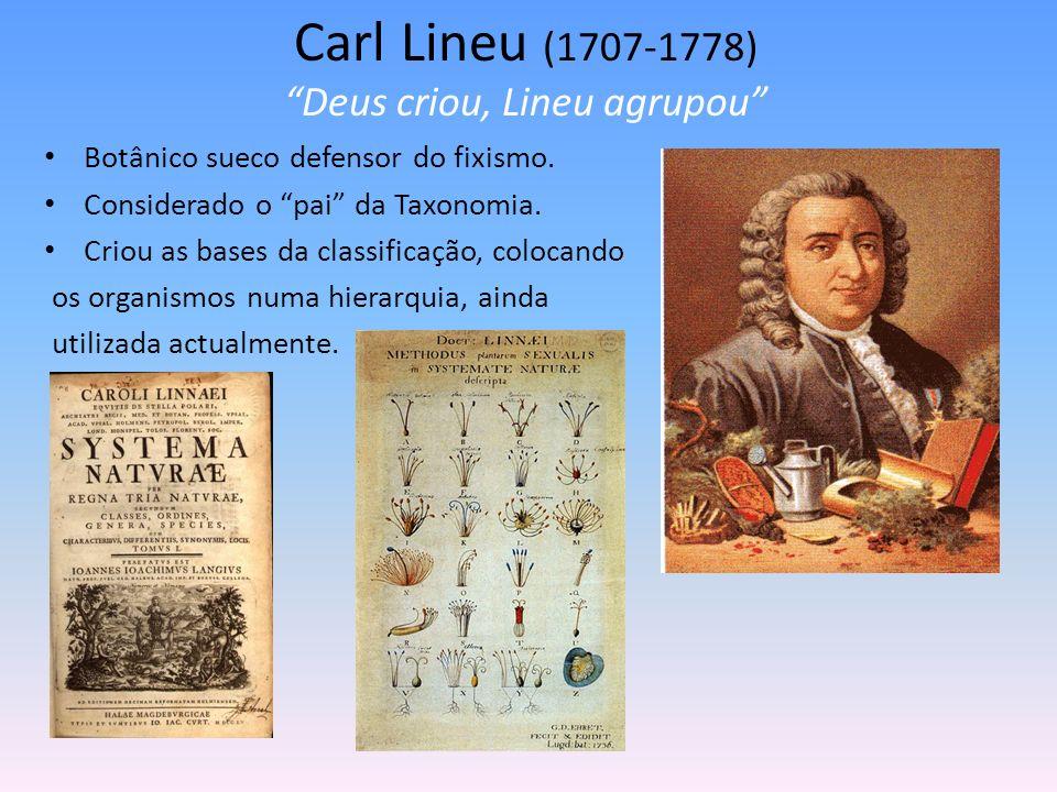 Carl Lineu (1707-1778) Deus criou, Lineu agrupou