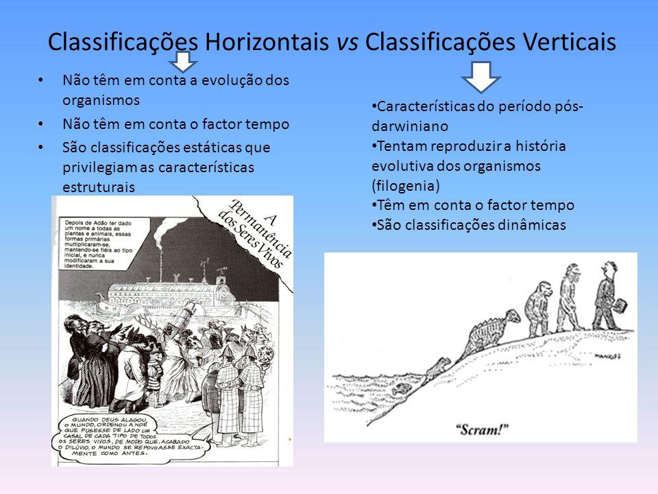 Classificações Horizontais vs Classificações Verticais