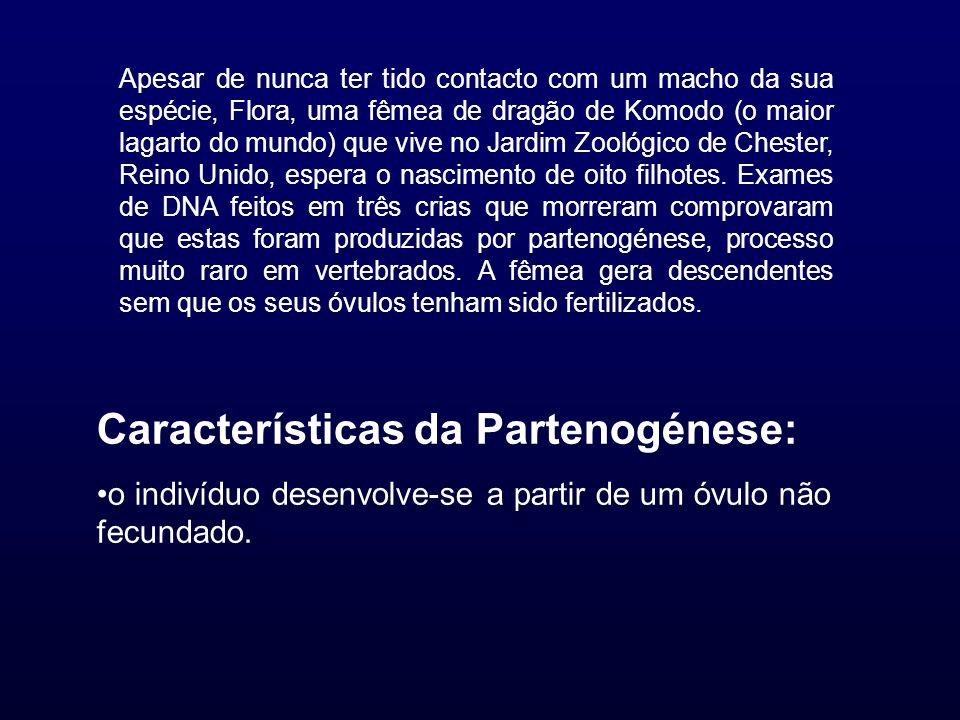 Características da Partenogénese: