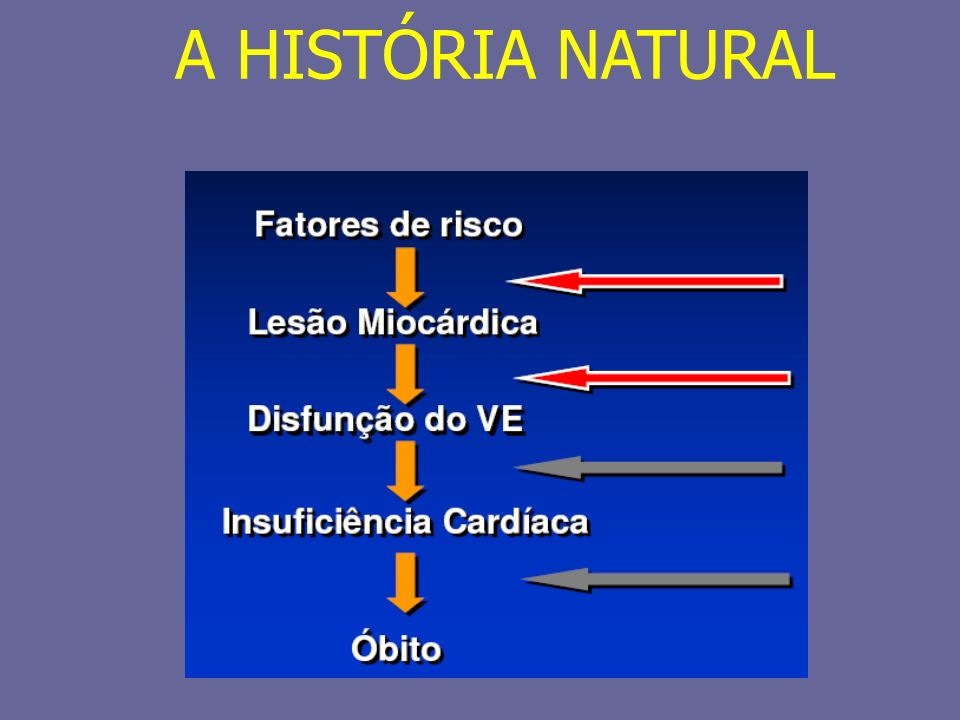 A HISTÓRIA NATURAL