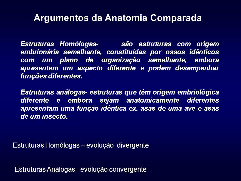 Argumentos da Anatomia Comparada