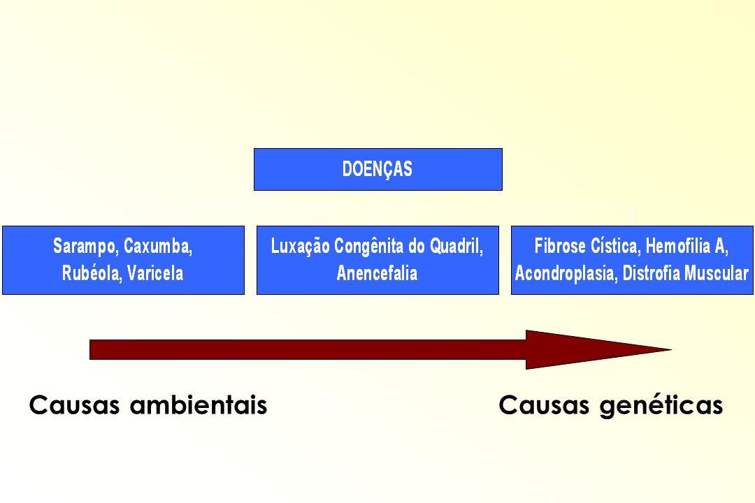 Causas ambientais Causas genéticas