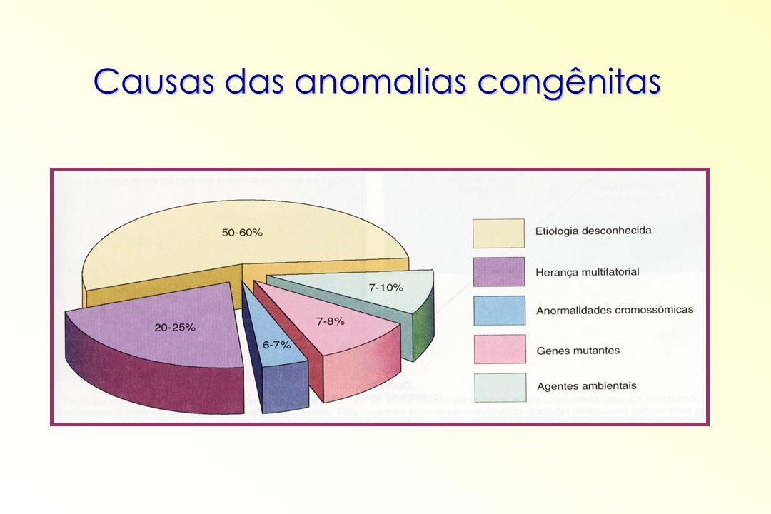 Causas das anomalias congênitas