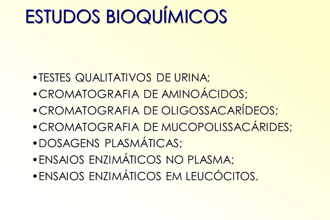 ESTUDOS BIOQUÍMICOS TESTES QUALITATIVOS DE URINA;