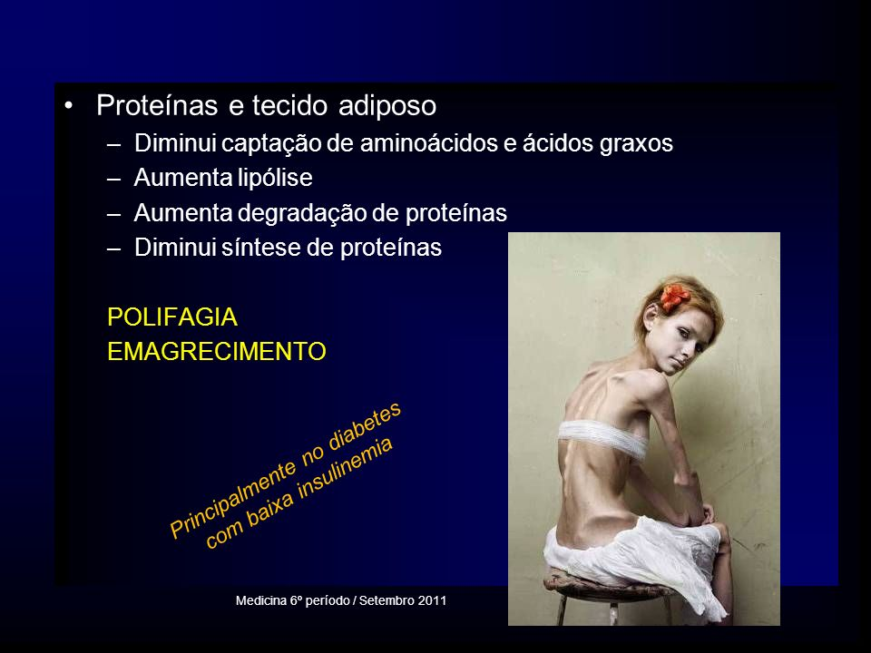 Proteínas e tecido adiposo