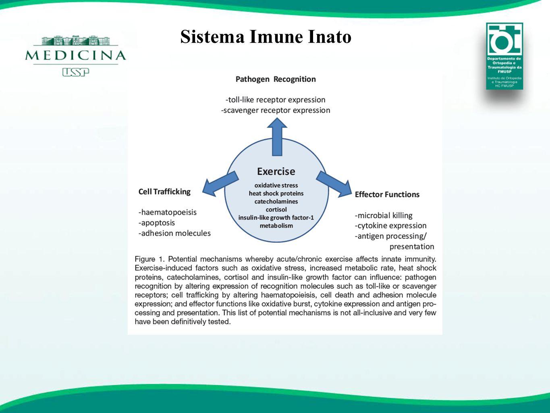 Sistema Imunológico Blindado -