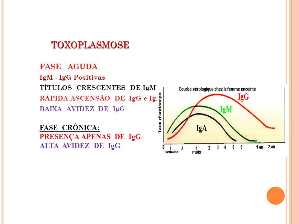 TOXOPLASMOSE FASE AGUDA FASE CRÔNICA: PRESENÇA APENAS DE IgG