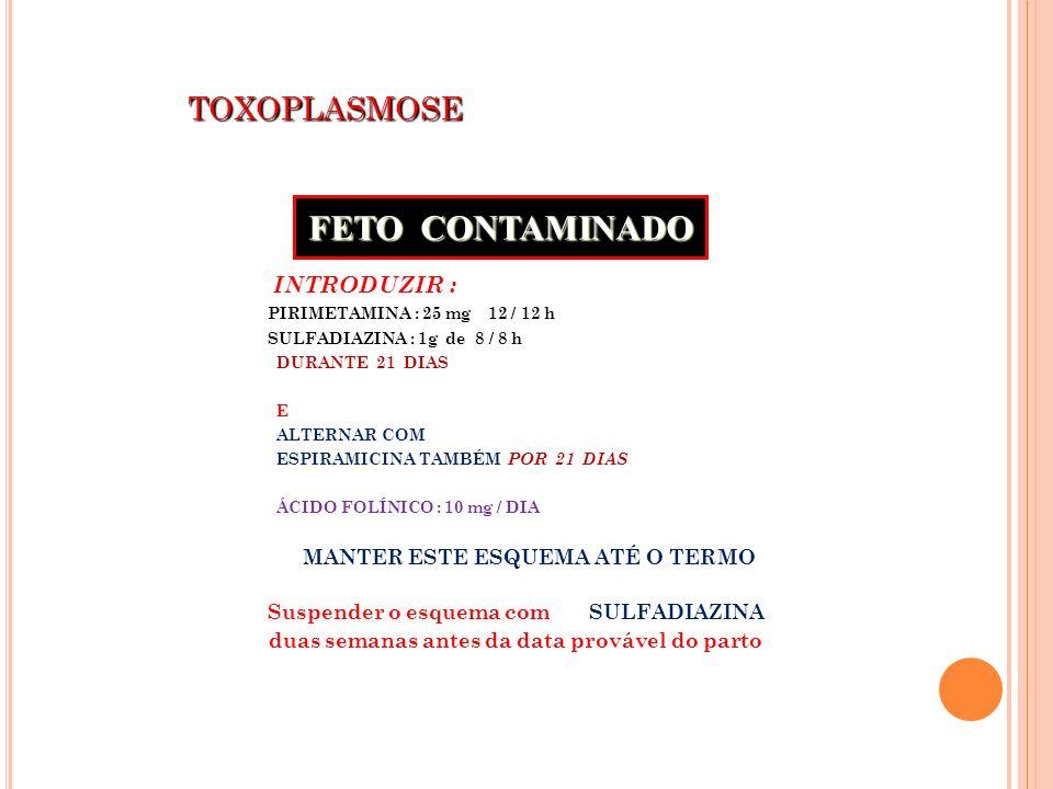 FETO CONTAMINADO TOXOPLASMOSE
