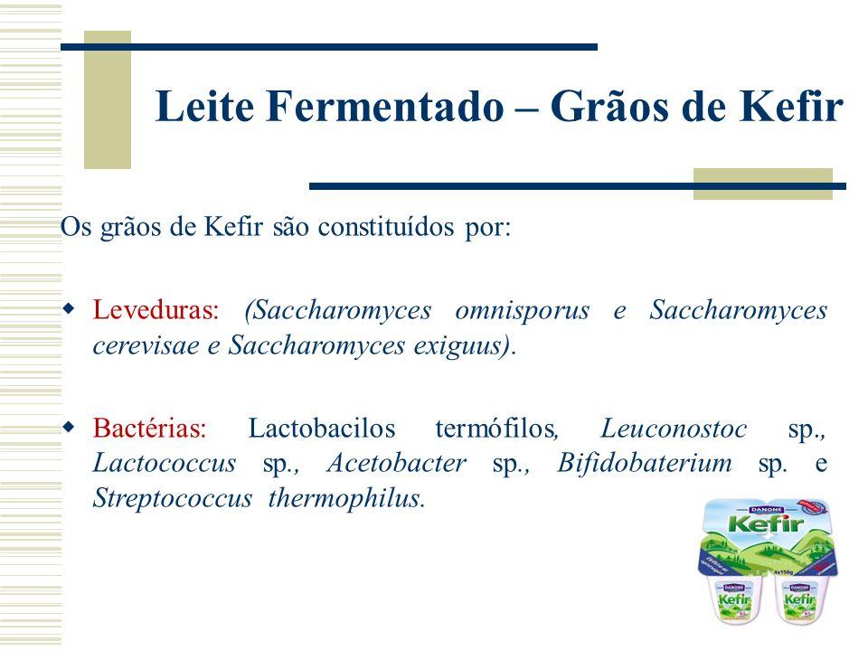 Leite Fermentado – Grãos de Kefir