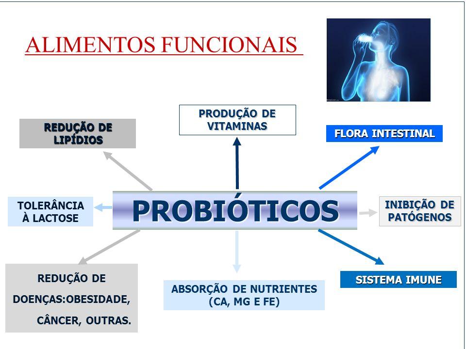 PROBIÓTICOS ALIMENTOS FUNCIONAIS PRODUÇÃO DE VITAMINAS
