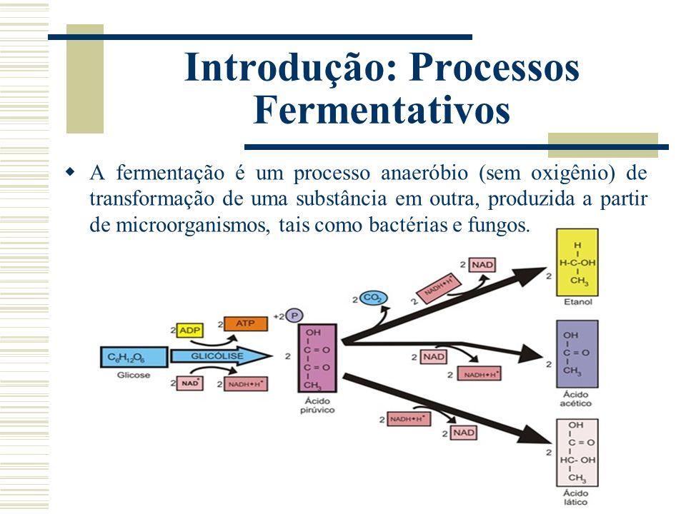 Introdução: Processos Fermentativos