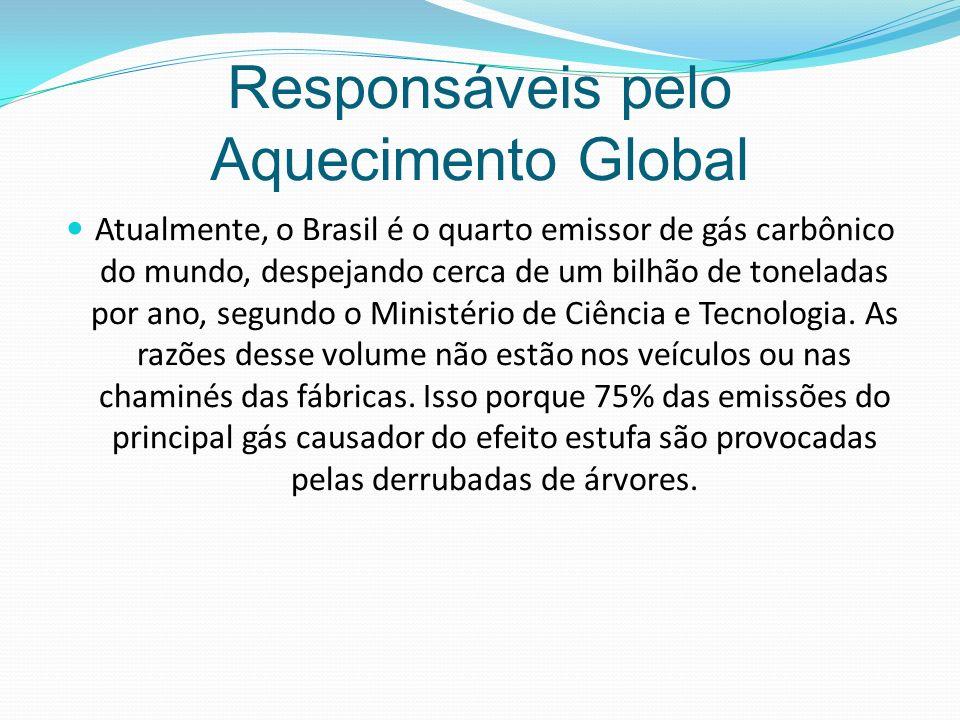 Responsáveis pelo Aquecimento Global
