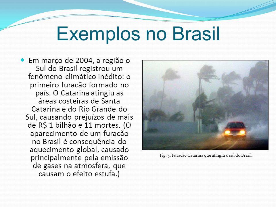 Fig. 5: Furacão Catarina que atingiu o sul do Brasil.