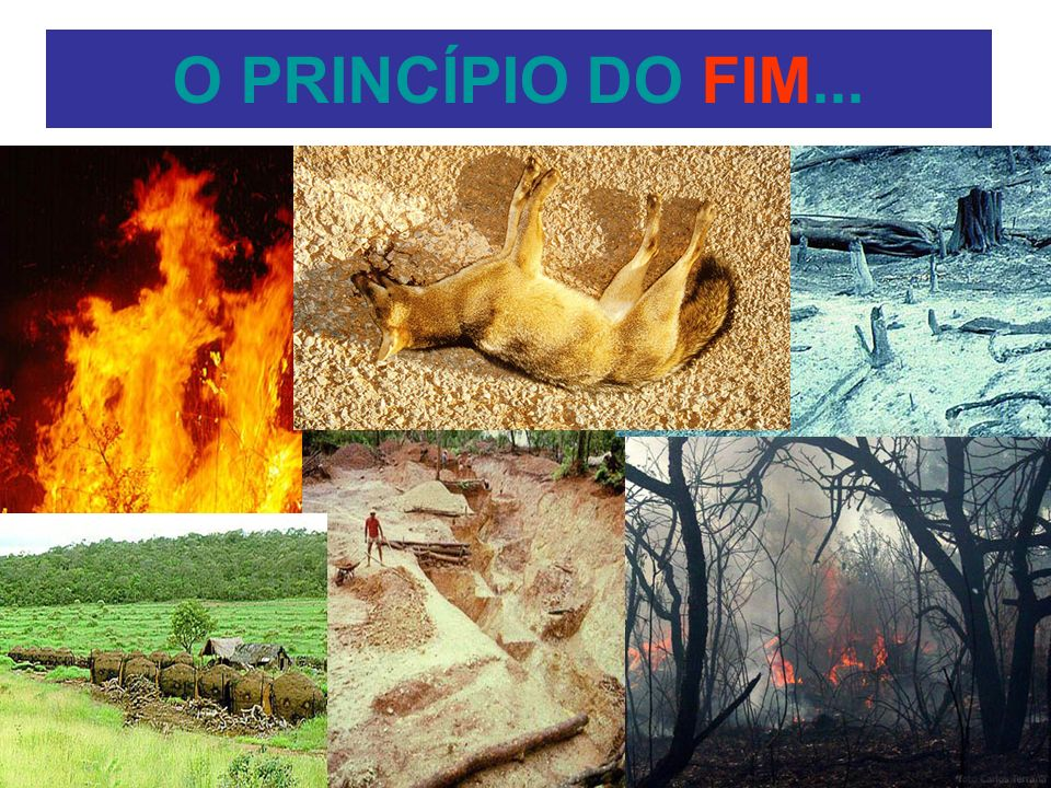 O PRINCÍPIO DO FIM...