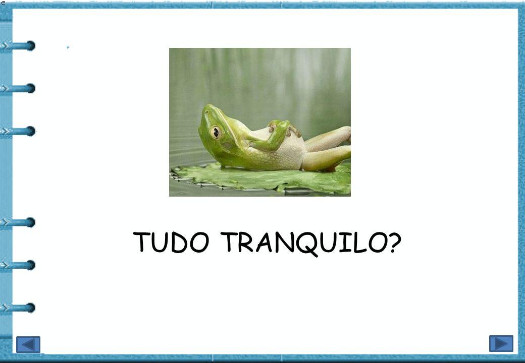 TUDO TRANQUILO